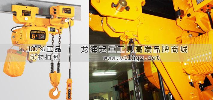 5t超低环链电动葫芦